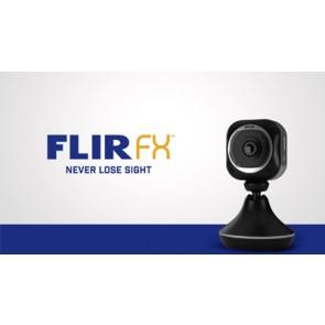 FLIR FX - Rapid Recap