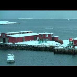 Iceberg detection Movie