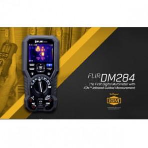 FLIR DM284 video